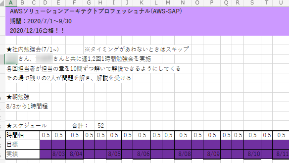 AWS Certified Solutions Architect Professional 勉強時間